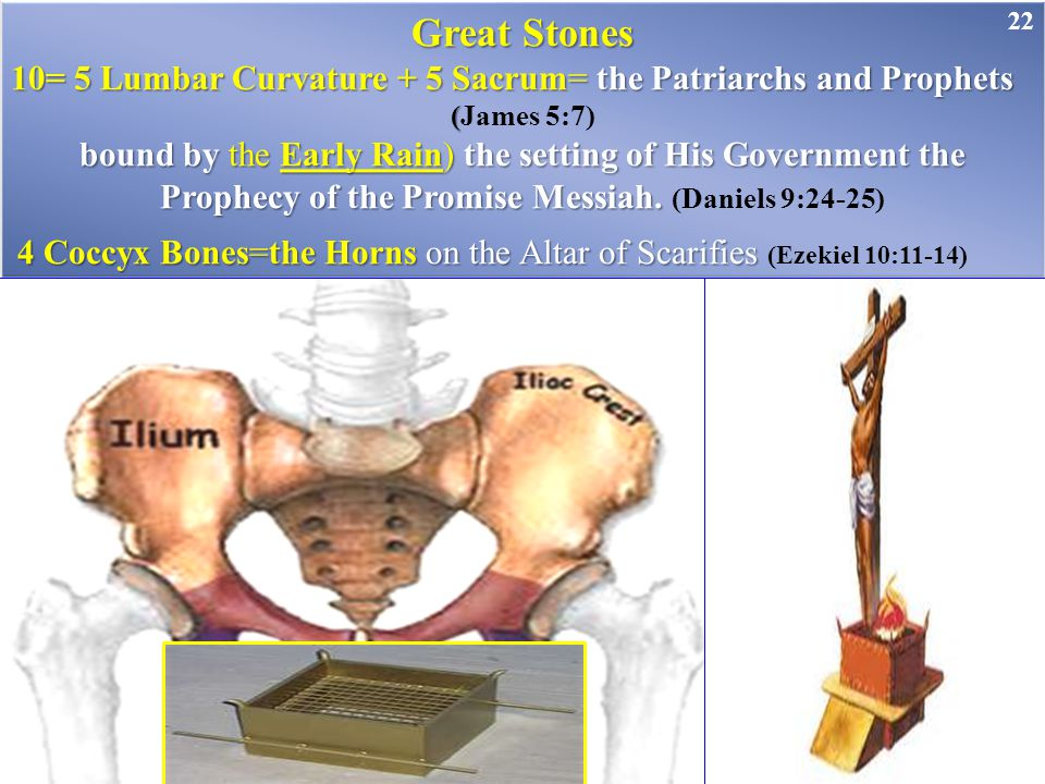 Great Stones 10= 5 Lumbar Curvature + 5 Sacrum= the Patriarchs and Prophets. (James 5:7)