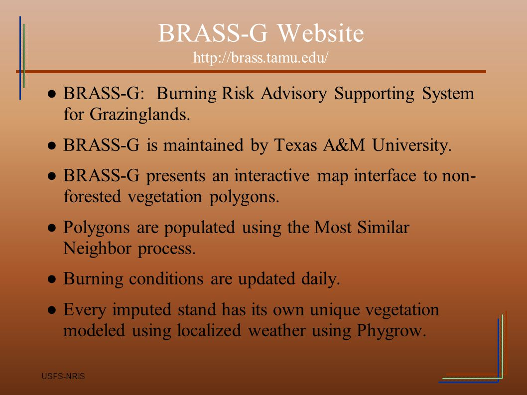 BRASS-G Website http://brass.tamu.edu/