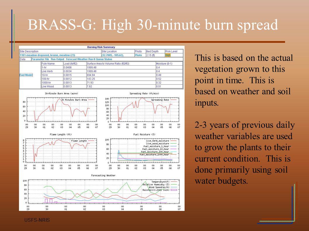 BRASS-G: High 30-minute burn spread