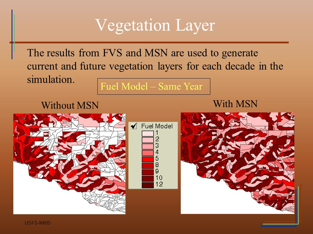Vegetation Layer The results from FVS and MSN are used to generate current and future vegetation layers for each decade in the simulation.
