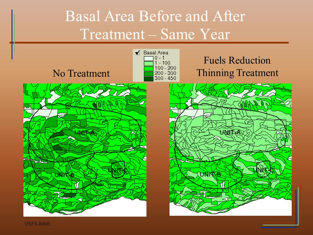 Basal Area Before and After Treatment – Same Year