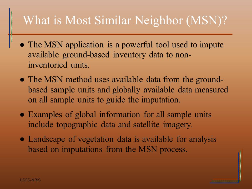 What is Most Similar Neighbor (MSN)