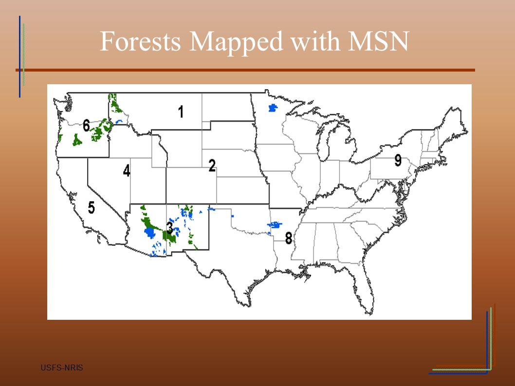 Forests Mapped with MSN