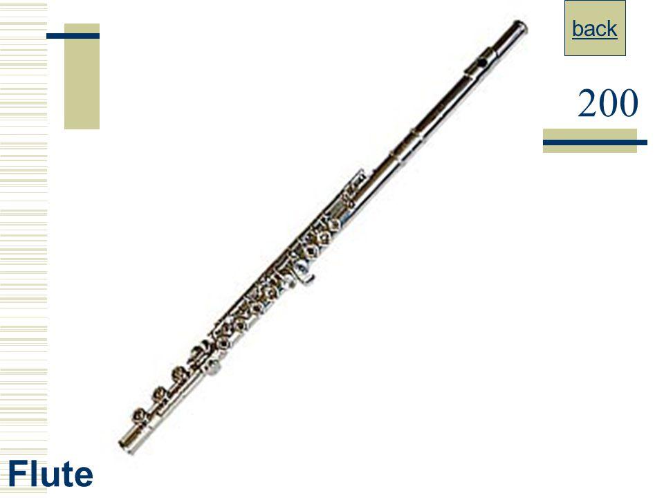 back 200 Flute