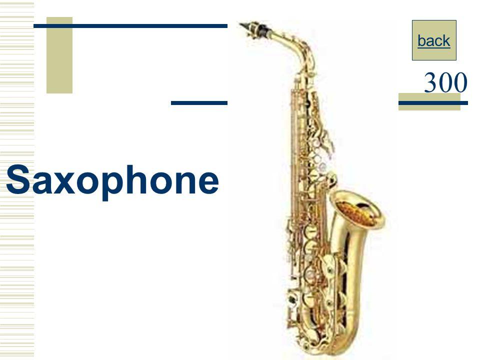 back 300 Saxophone