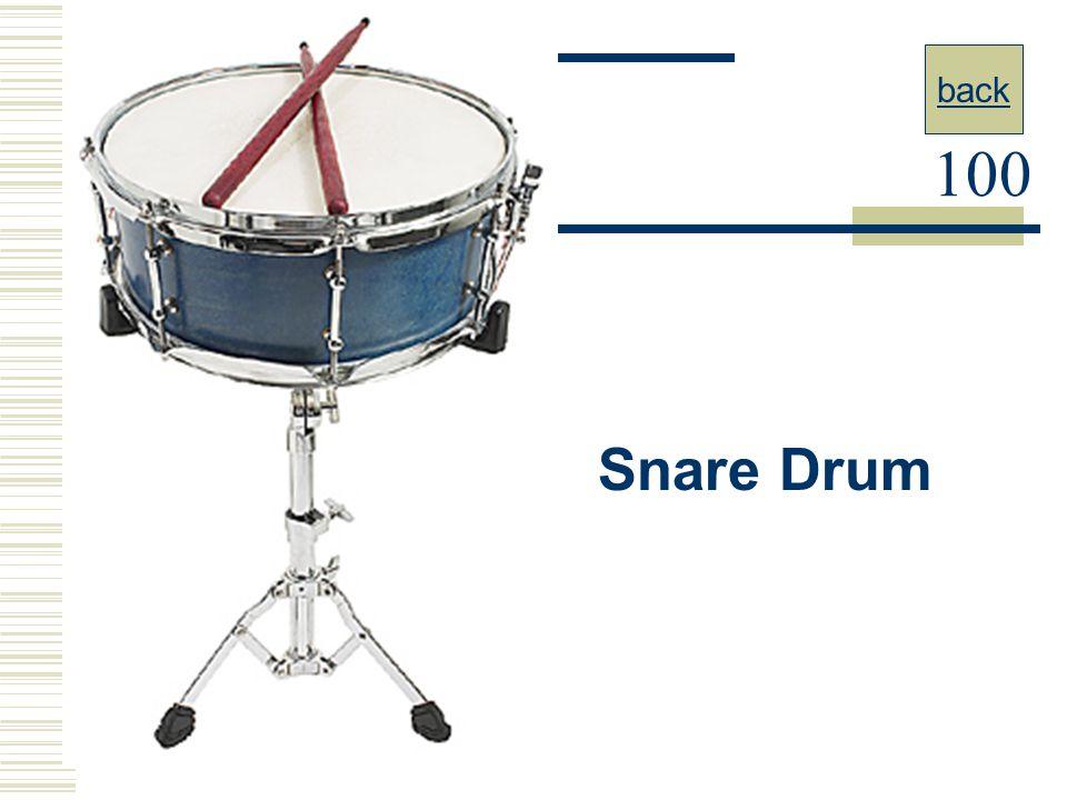 back 100 Snare Drum