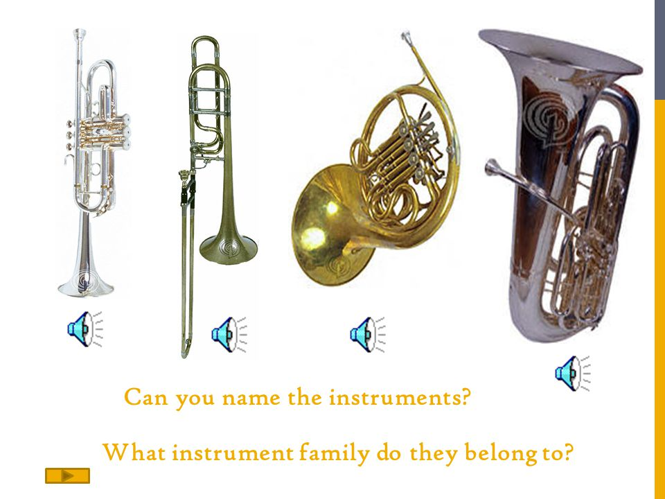 What instrument family do they belong to