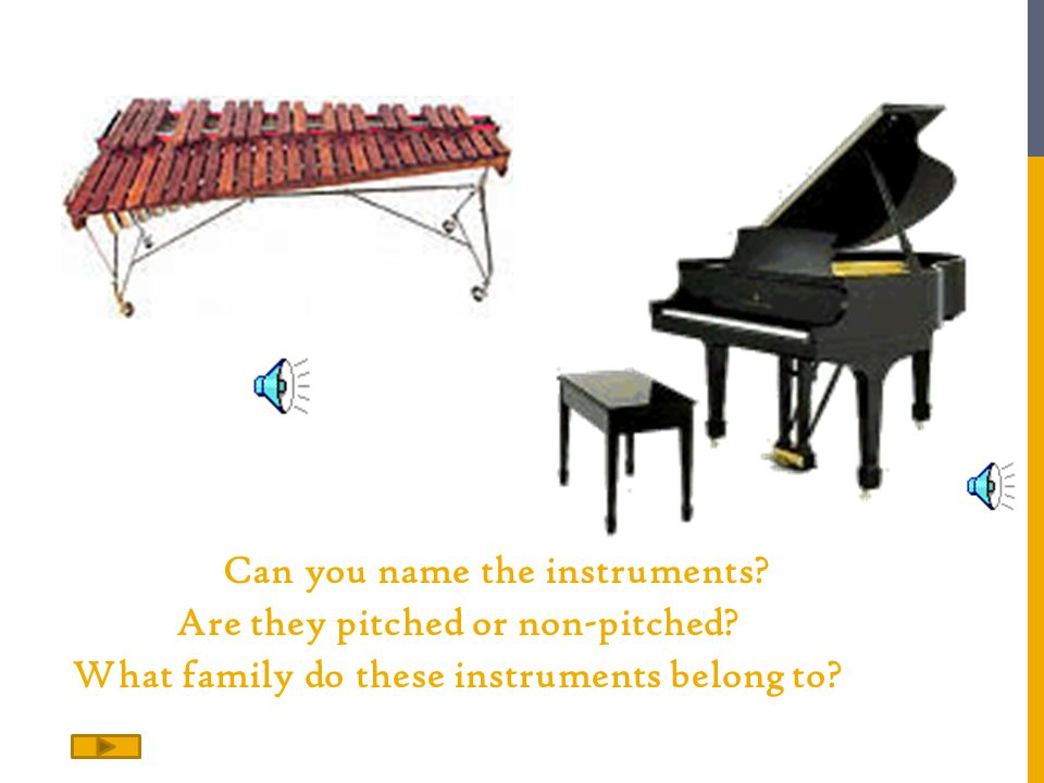 Can you name the instruments