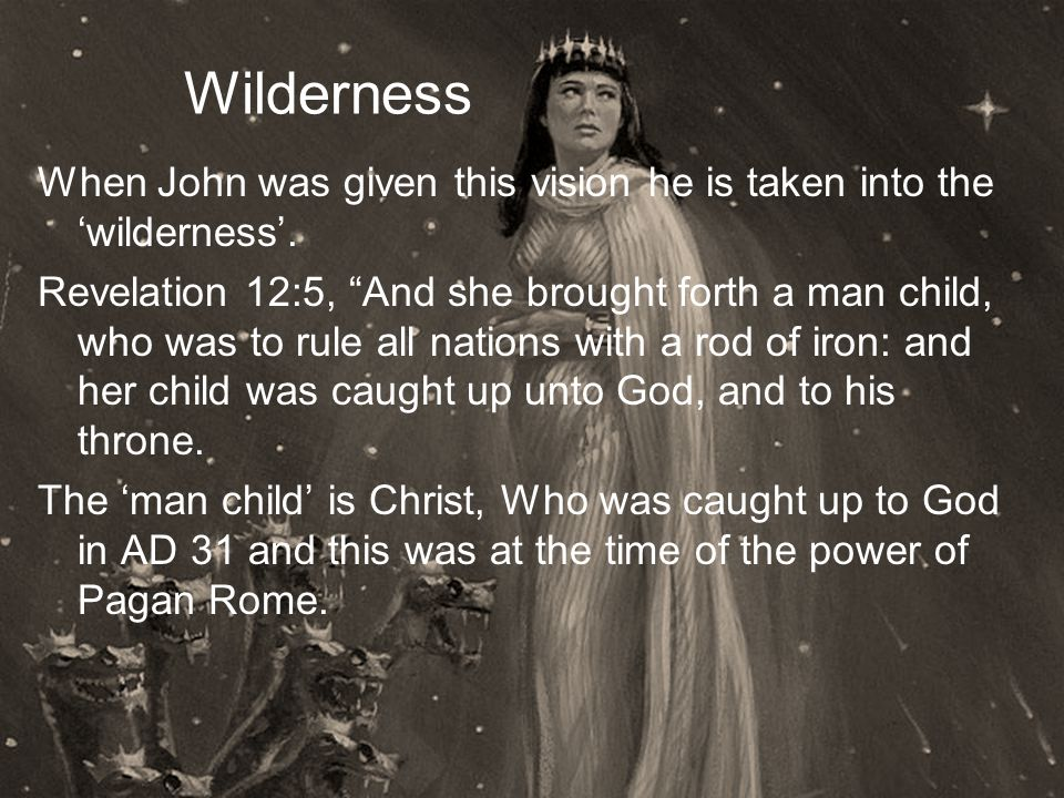 Wilderness When John was given this vision he is taken into the 'wilderness'.