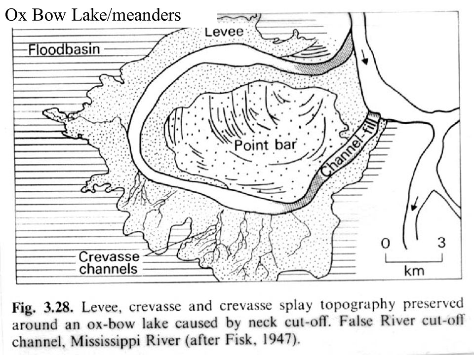 Ox Bow Lake/meanders