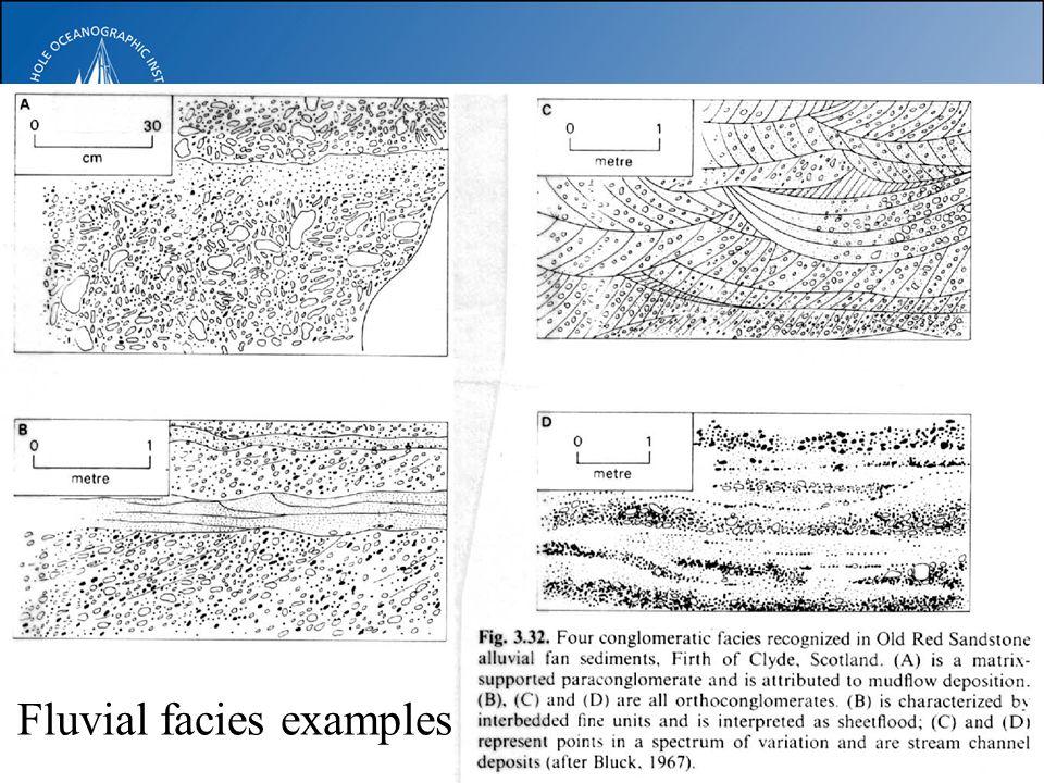 Fluvial facies examples