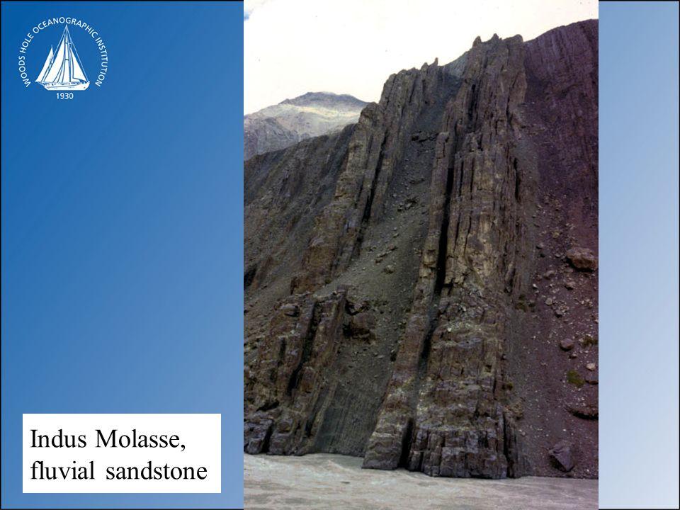 Indus Molasse, fluvial sandstone