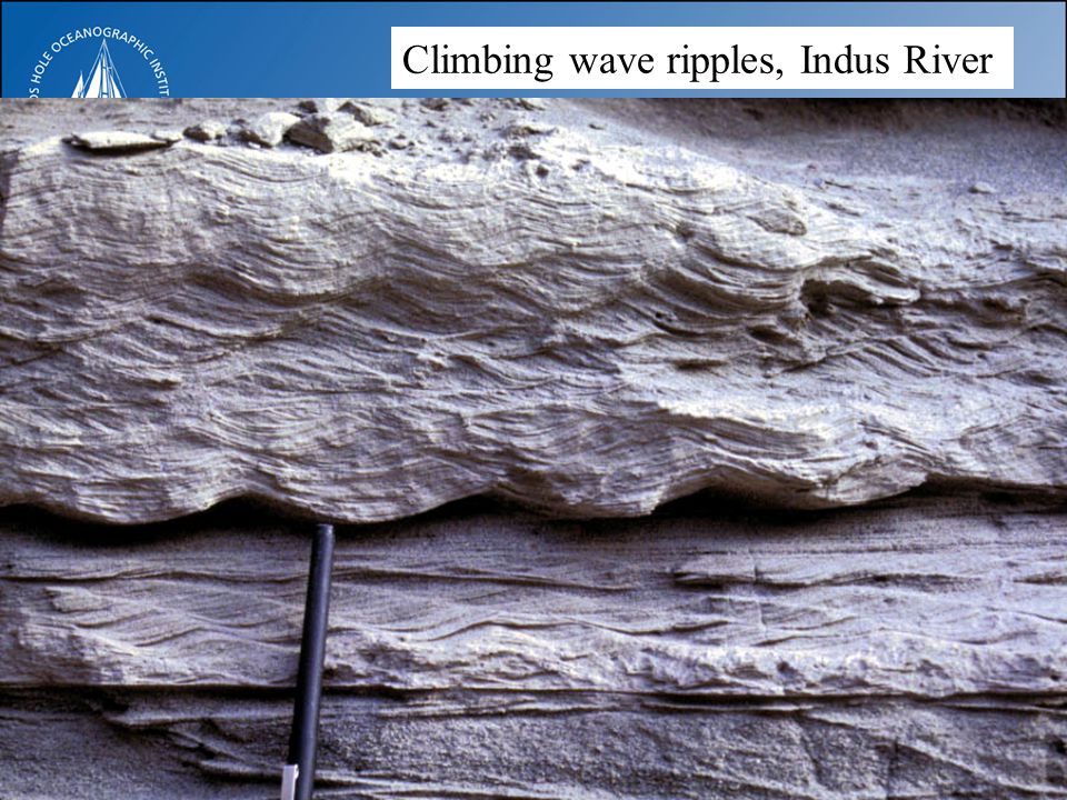 Climbing wave ripples, Indus River