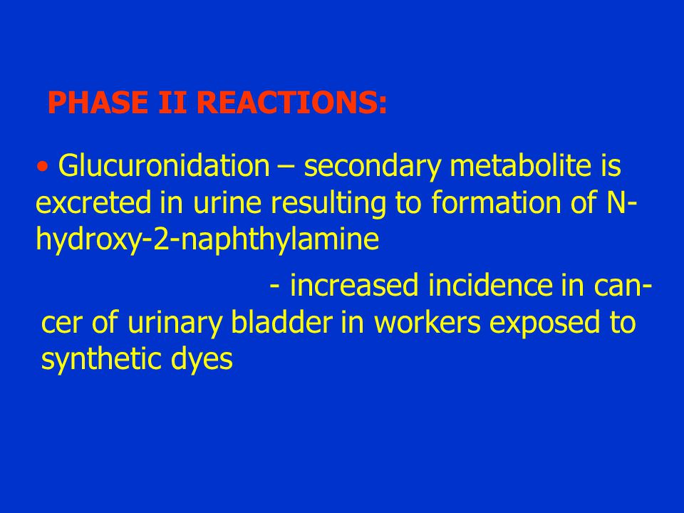 PHASE II REACTIONS: Glucuronidation – secondary metabolite is. excreted in urine resulting to formation of N-