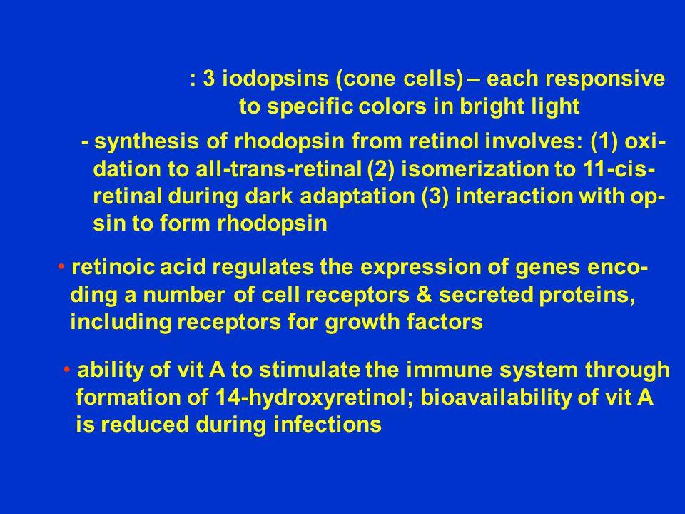 : 3 iodopsins (cone cells) – each responsive