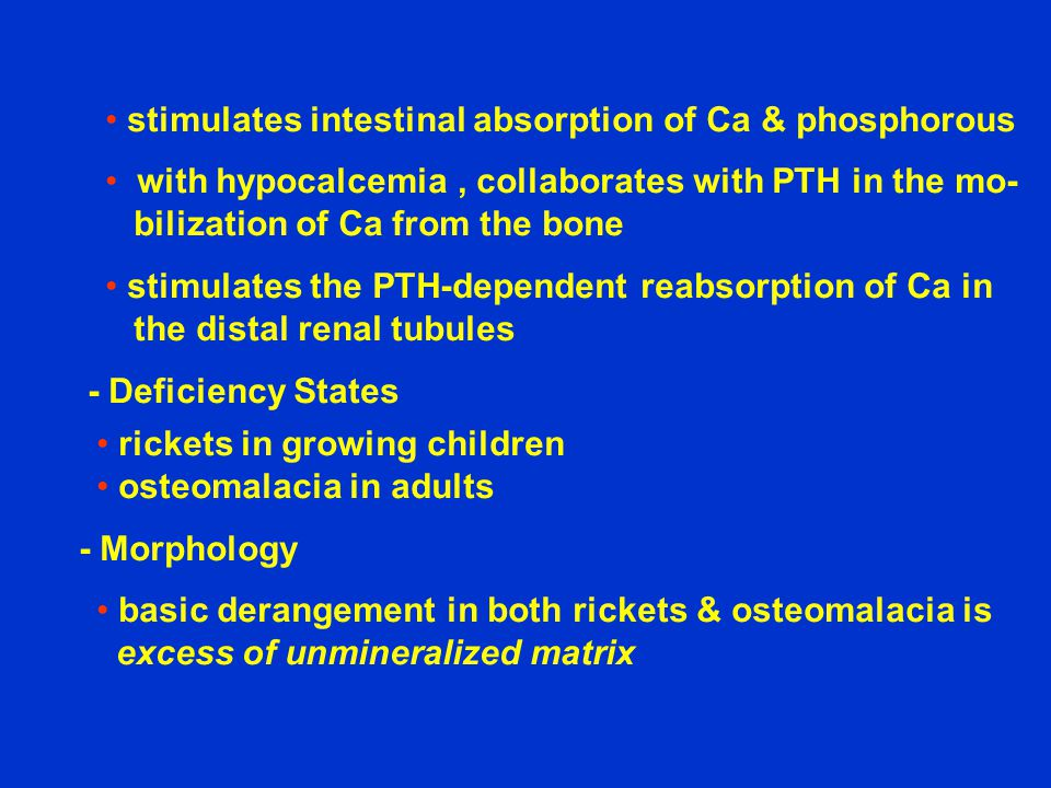 stimulates intestinal absorption of Ca & phosphorous