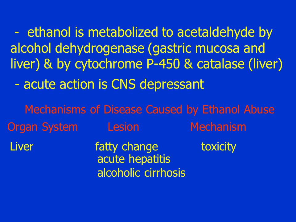 - ethanol is metabolized to acetaldehyde by