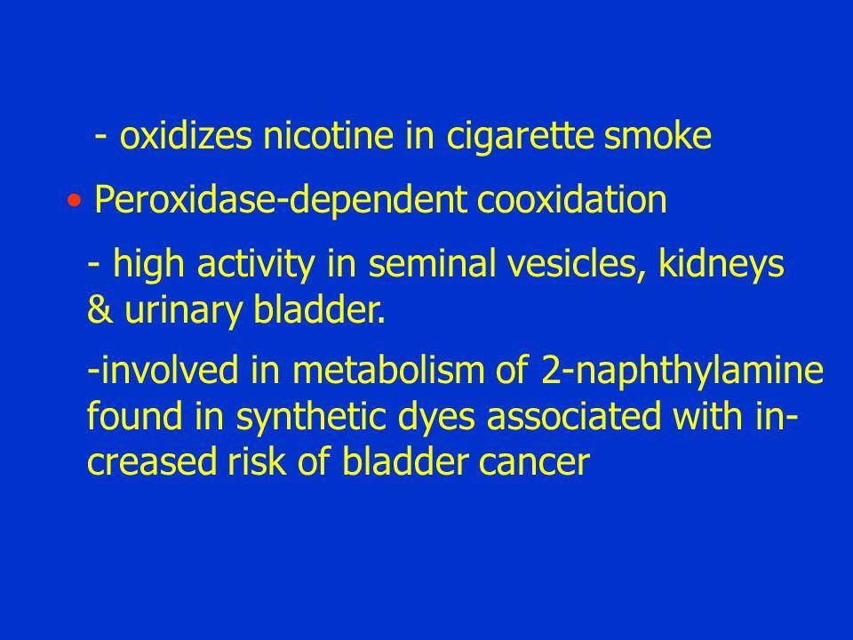 - oxidizes nicotine in cigarette smoke