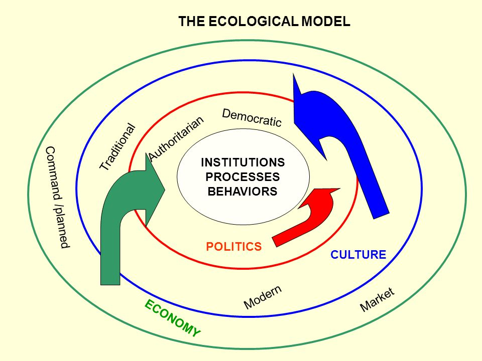 THE ECOLOGICAL MODEL Democratic Authoritarian Traditional INSTITUTIONS