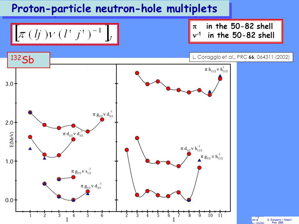 Proton-particle neutron-hole multiplets