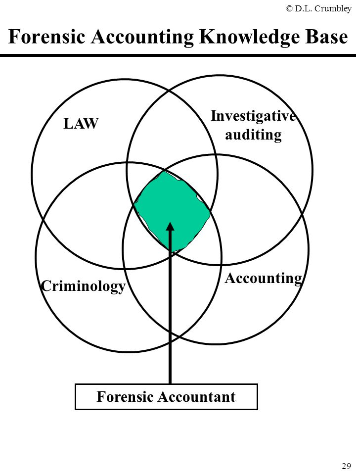 Forensic Accounting Knowledge Base