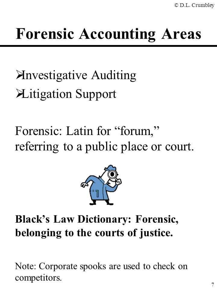 Forensic Accounting Areas