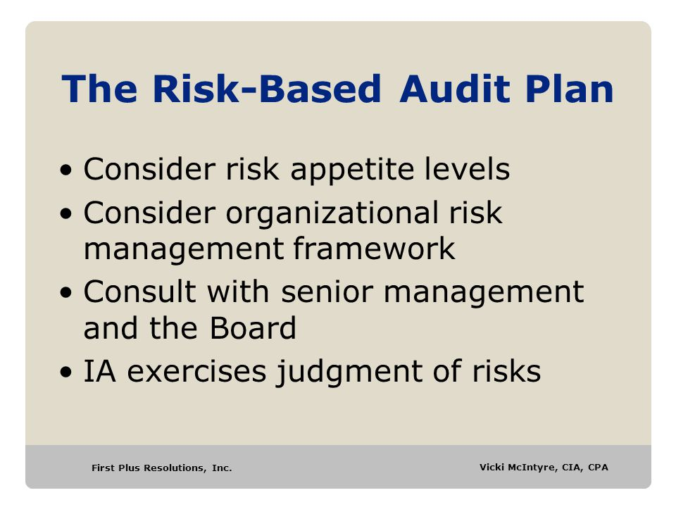 The Risk-Based Audit Plan