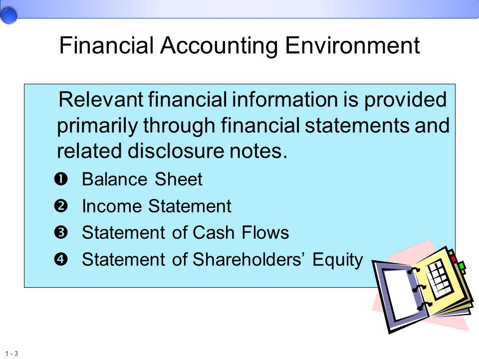 Financial Accounting Environment