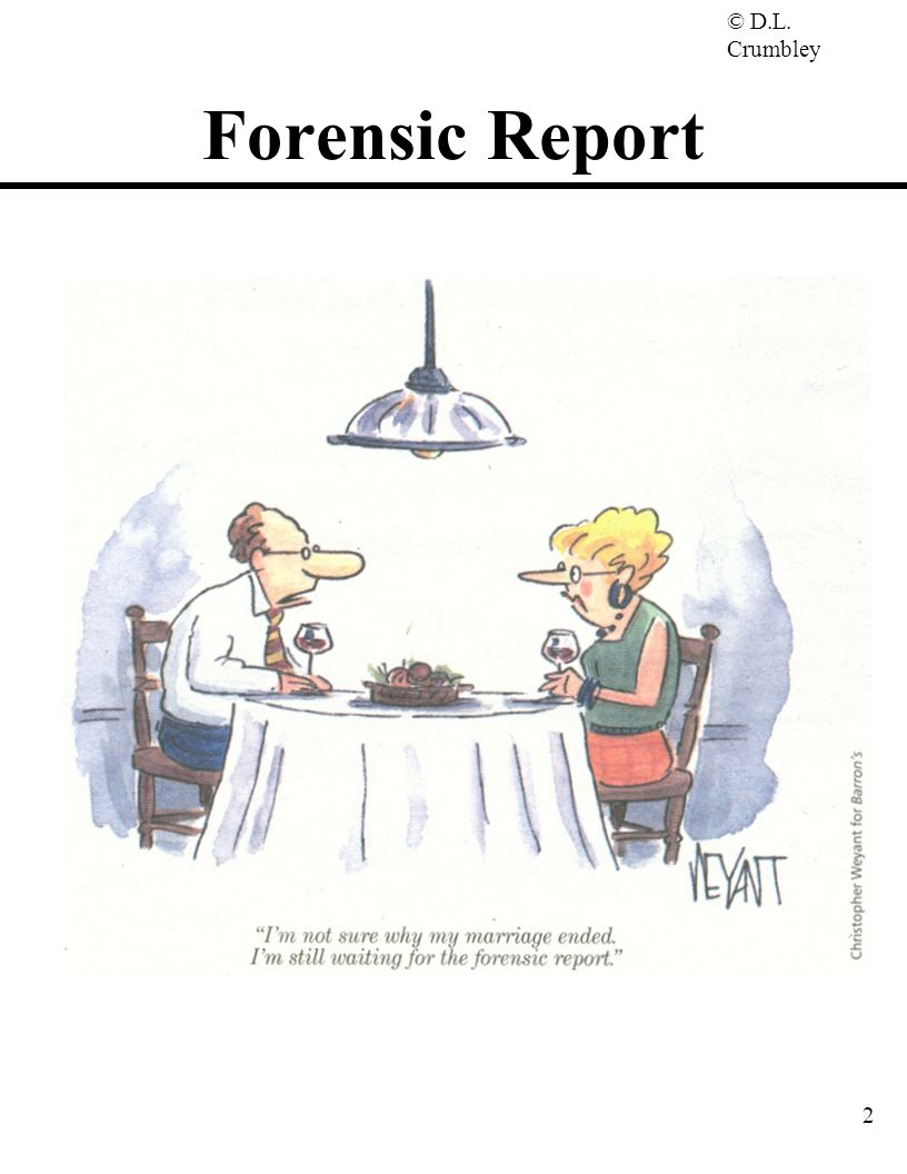 Forensic Report