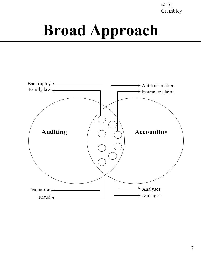 Broad Approach Auditing Accounting Bankruptcy Antitrust matters