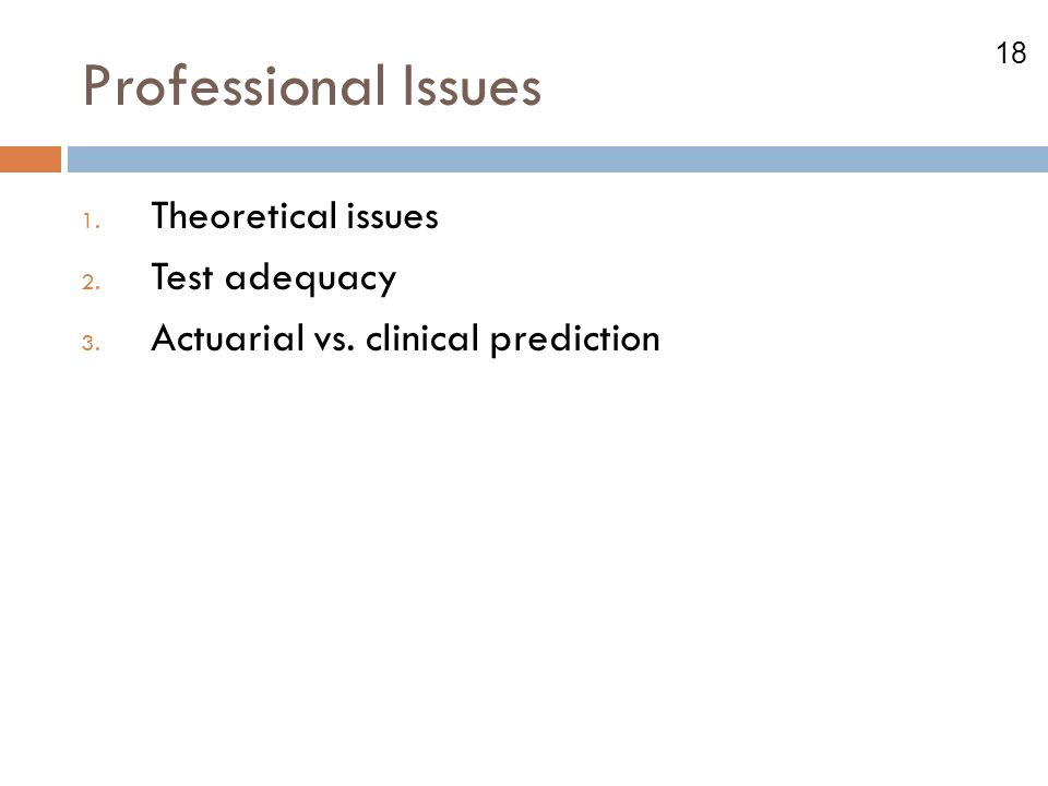 Professional Issues Theoretical issues Test adequacy