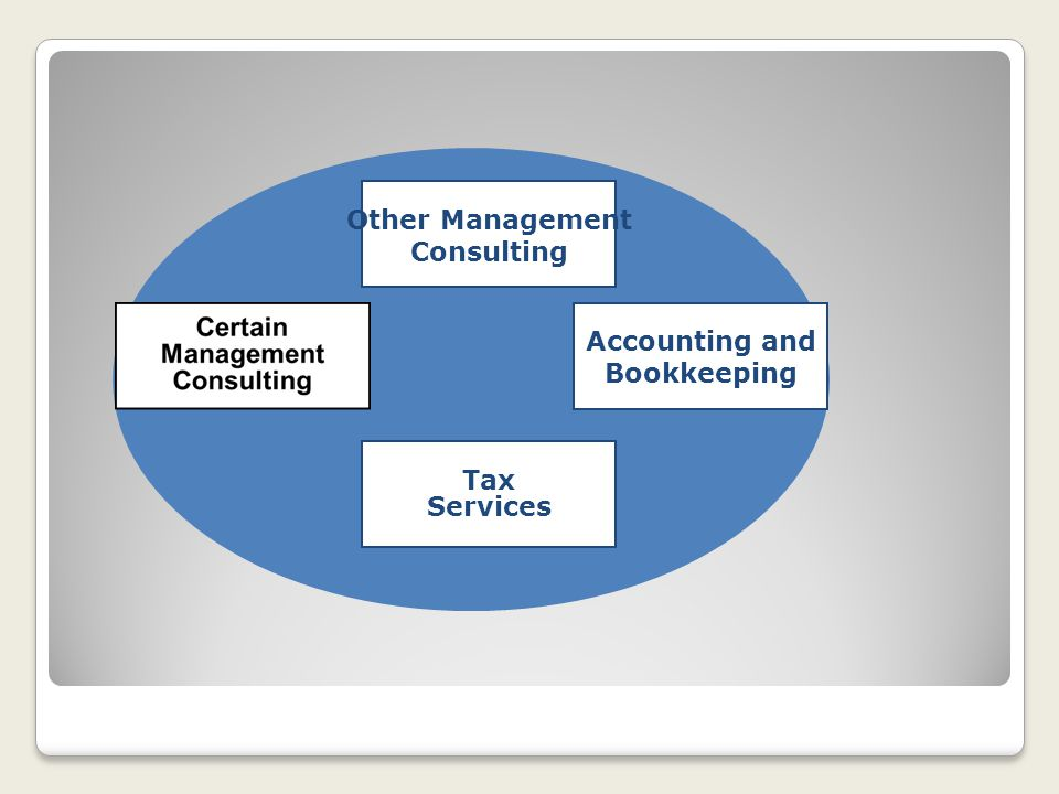 Other Management Consulting Accounting and Bookkeeping Tax Services