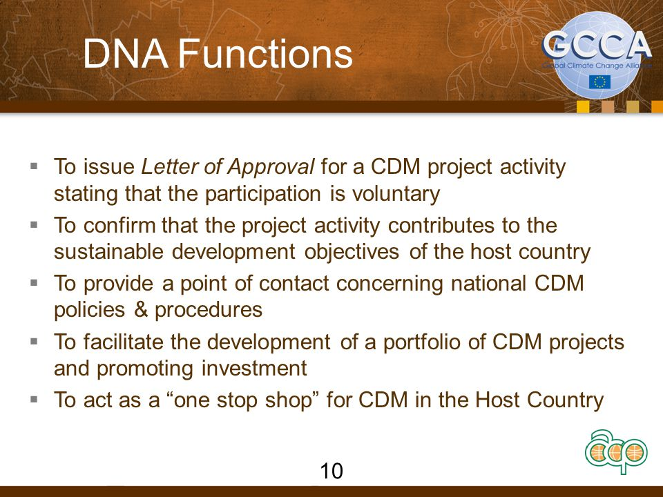 DNA Functions To issue Letter of Approval for a CDM project activity stating that the participation is voluntary.