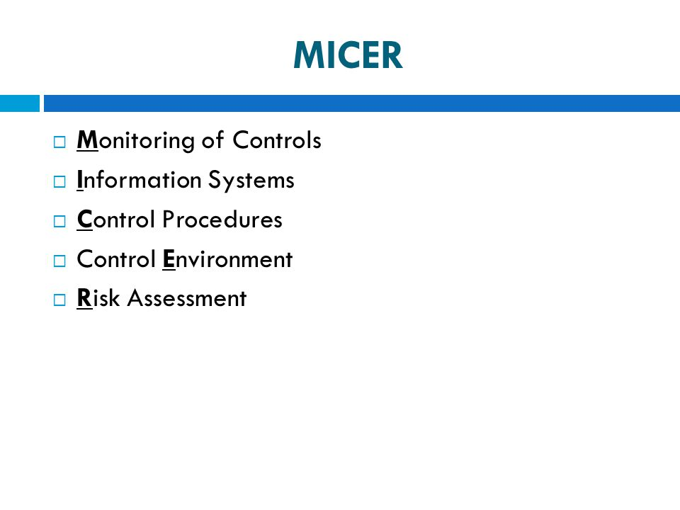 MICER Monitoring of Controls Information Systems Control Procedures