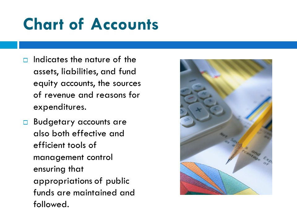 Chart of Accounts Indicates the nature of the assets, liabilities, and fund equity accounts, the sources of revenue and reasons for expenditures.