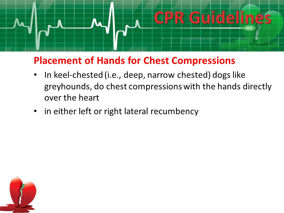 CPR Guidelines Placement of Hands for Chest Compressions