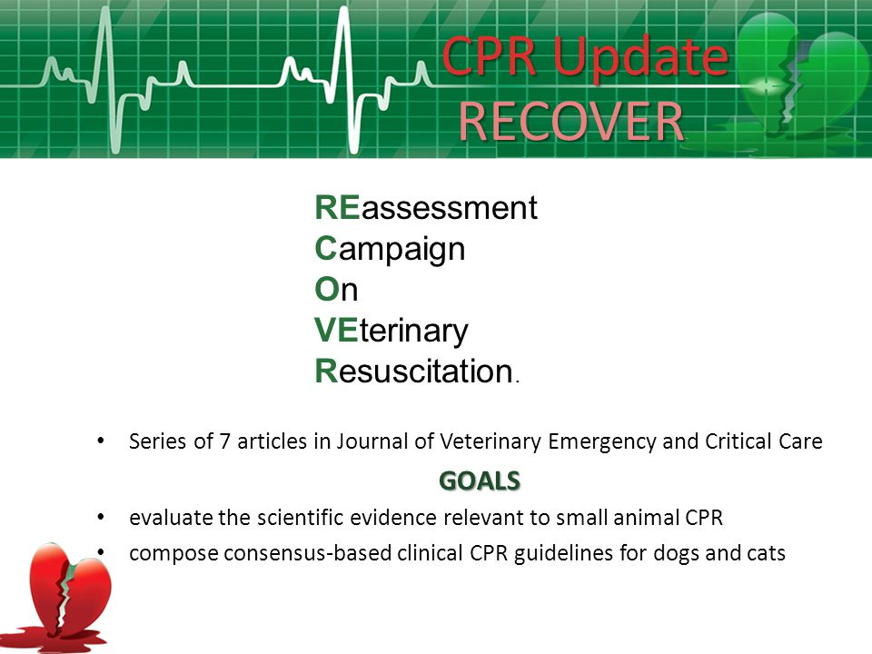 CPR Update RECOVER REassessment Campaign On VEterinary Resuscitation.