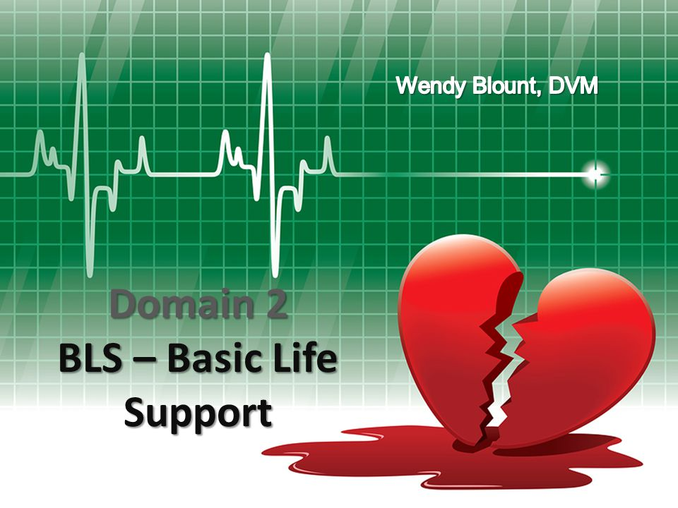Domain 2 BLS – Basic Life Support