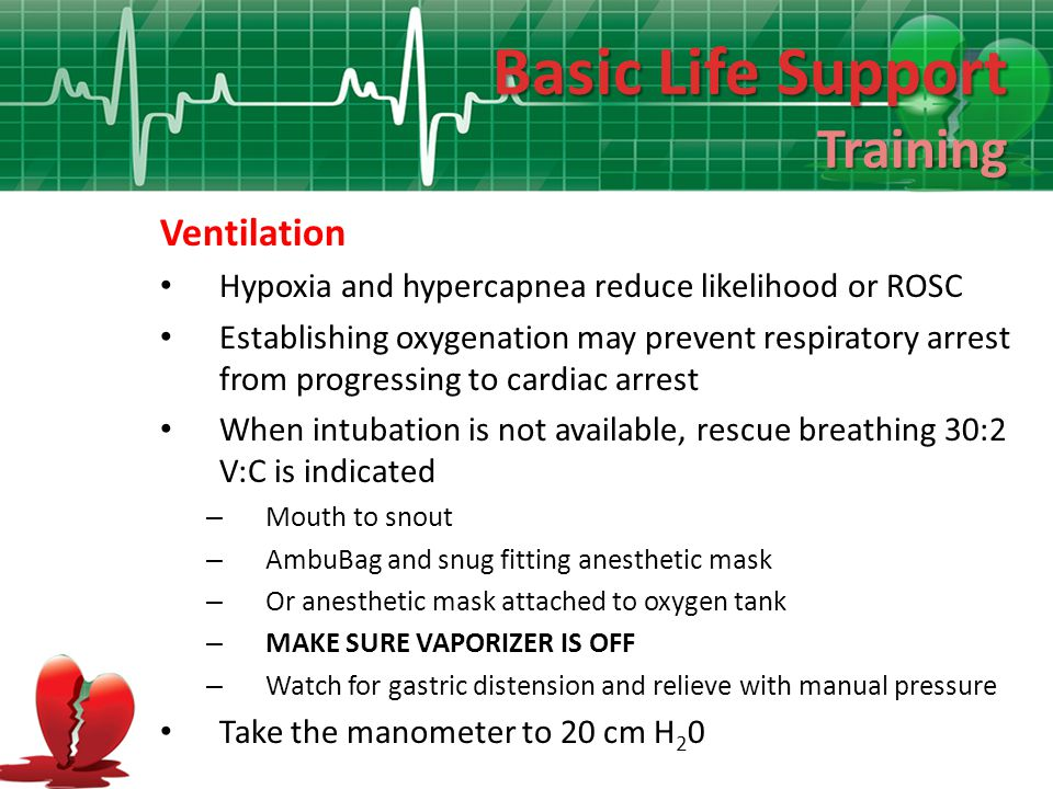 Basic Life Support Training Ventilation