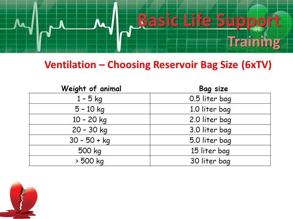 Basic Life Support Training