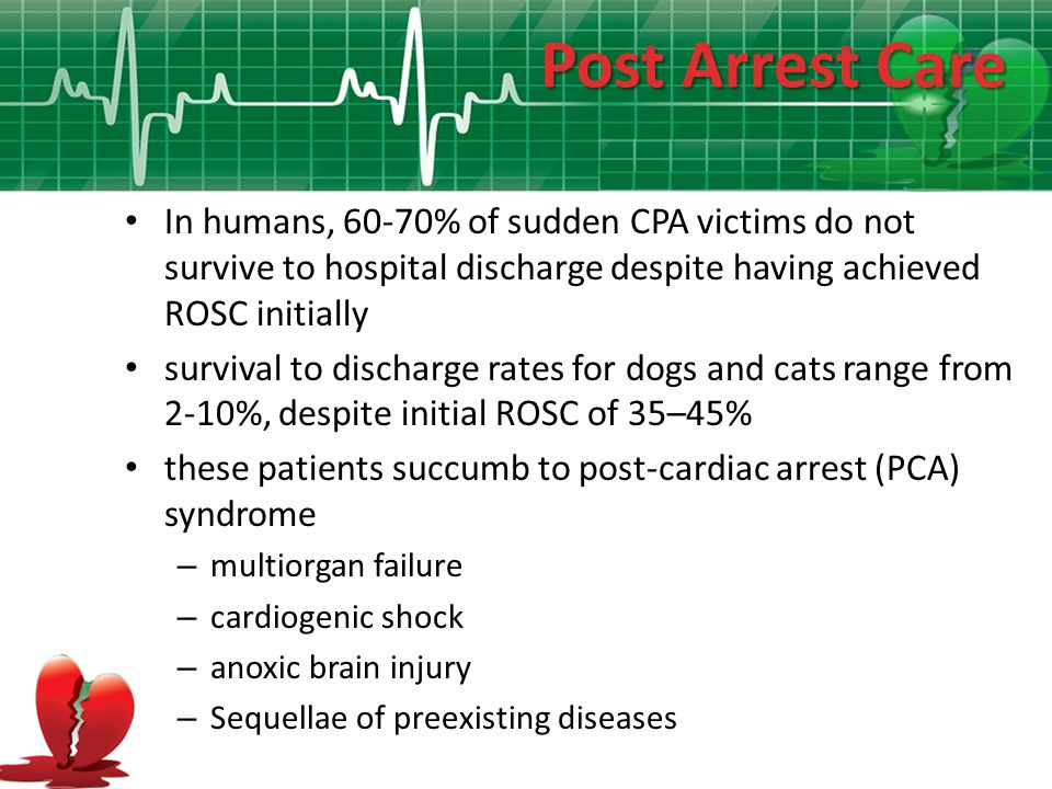 Post Arrest Care In humans, 60-70% of sudden CPA victims do not survive to hospital discharge despite having achieved ROSC initially.
