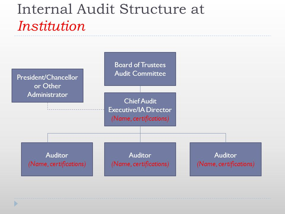 Internal Audit Structure at Institution