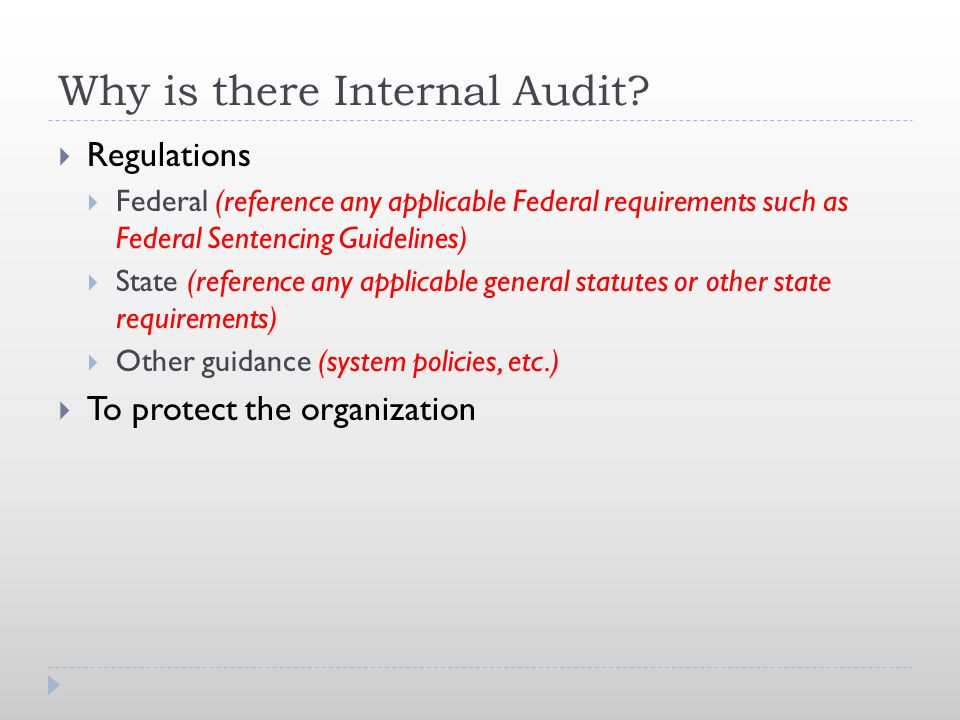 Why is there Internal Audit