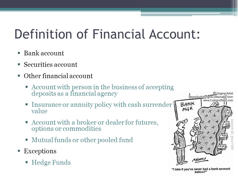 Definition of Financial Account: