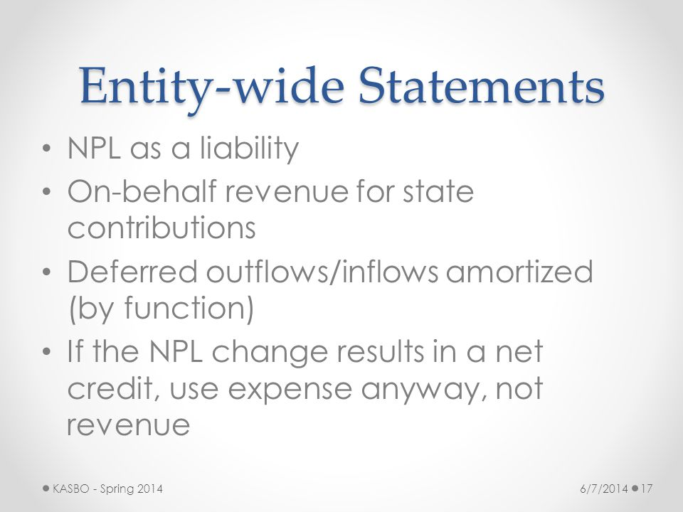 Entity-wide Statements