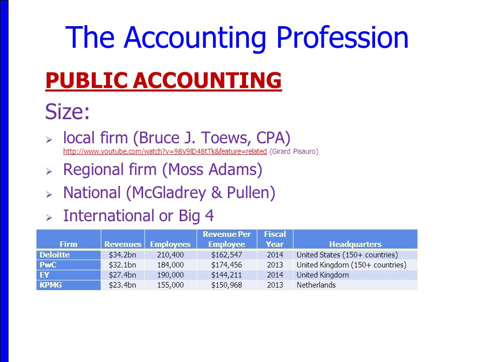 The Accounting Profession
