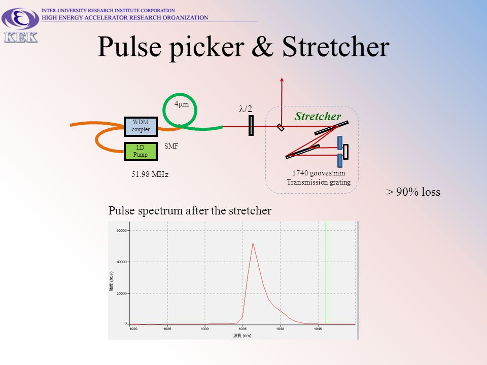 Pulse picker & Stretcher