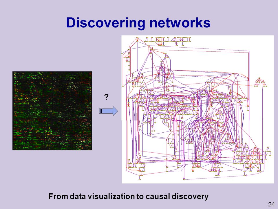 From data visualization to causal discovery