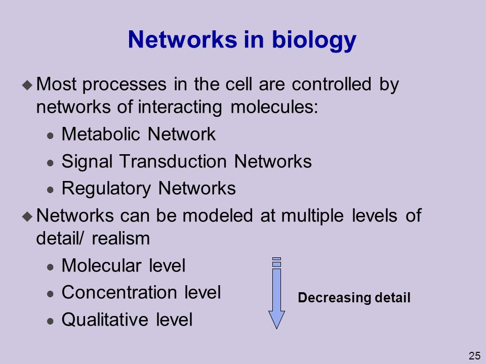 Networks in biology Most processes in the cell are controlled by networks of interacting molecules: