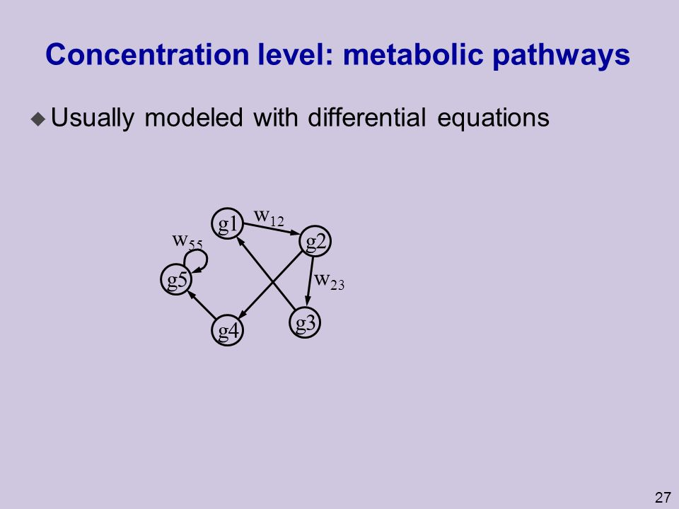 Concentration level: metabolic pathways